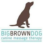 Big Brown Dog Therapy