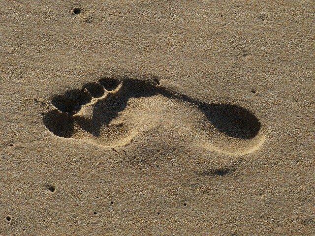 What is a digital footprint?