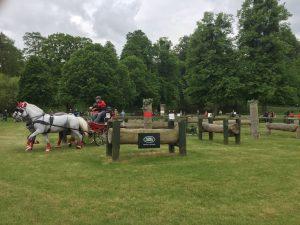 Windsor Horse Show Sponsorship